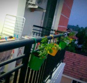 Balcony Hanging Buckets