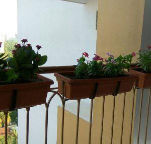 Balcony Planting Cases