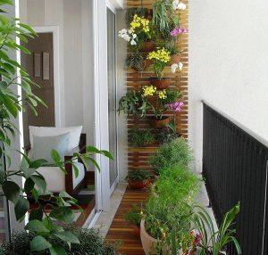 indoor-vertical-garden