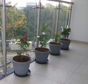 Window side planting buckets