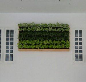 Outdoor Wall Pattern Plant Holder