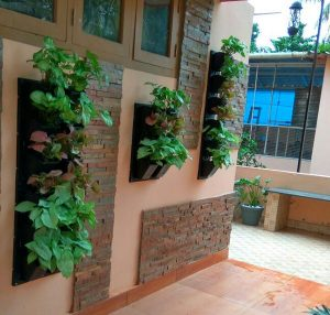 Outdoor Wall Plant Holders