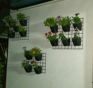 Plant Holding Grills