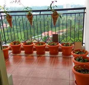 Planting Pots and Coned Planters