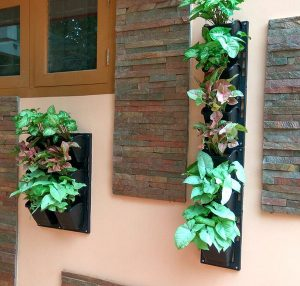 Wall Mount Planting